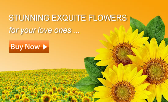 Our Products | Send Your Flowers in Malaysia for Any Occasions