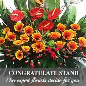 Congratulate Stand