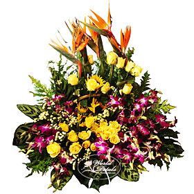 Floral Festival